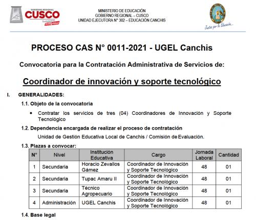 Captura de pantalla CAS_11