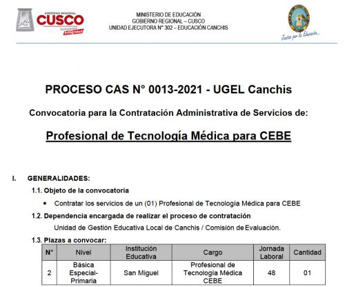 Captura de pantalla CAS_13